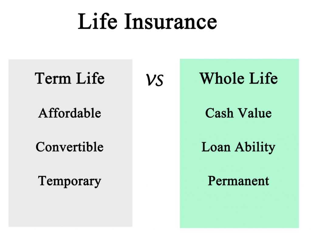 Life Insurance: Term and Permanent.